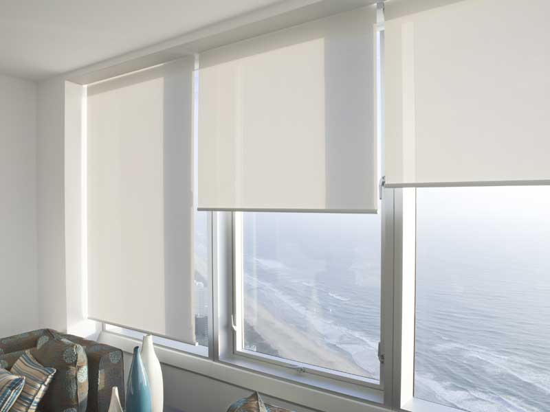 roller blinds translucent